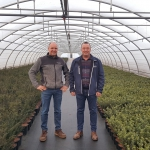 Vita Nova Tuinplanten switches its entire nursery over to Ekote coated fertilizers